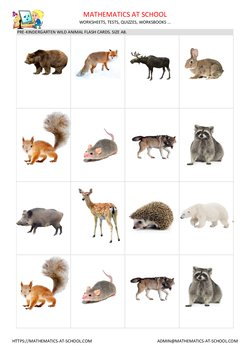 Wild animal flash cards, A8 size