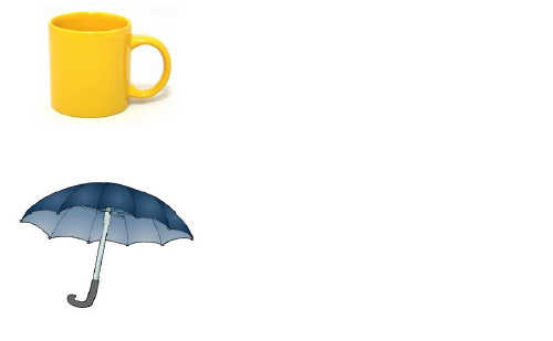 The cup and the umbrella